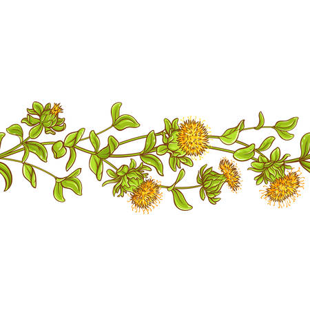 A safflower plant vector pattern isolated on plain background.