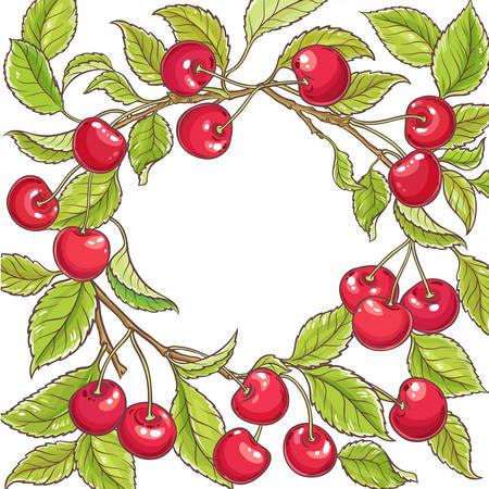cherry branch vector frame illustration 矢量图像