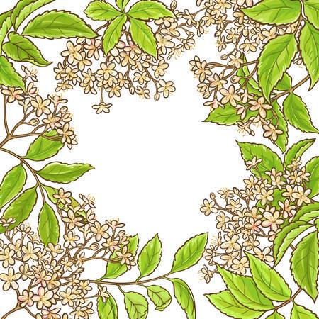 elderberry branch vector frame on white background Illustration