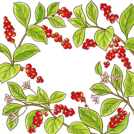 schisandra branch vector frame