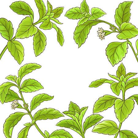 stevia branch vector frame Illustration
