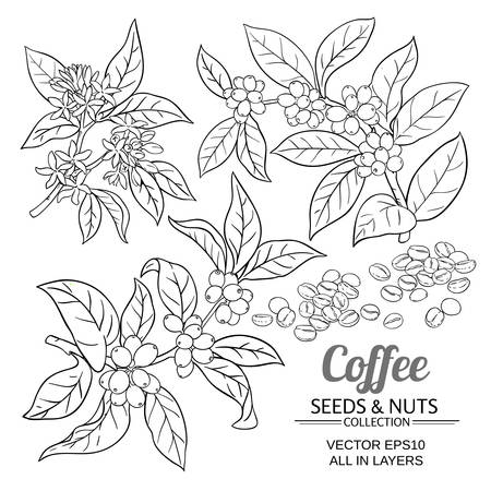 Koffie vector set Stockfoto - 99420248