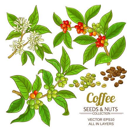 Ikona wektor zestaw kawy.