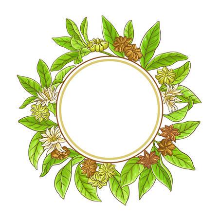 anise branches frame Illustration