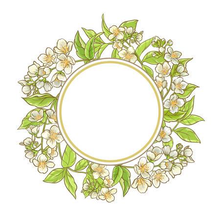 Jasmine branch in a circular vector frame Illustration