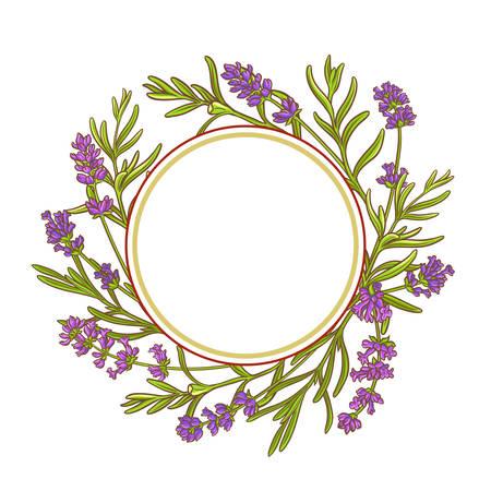 lavender plant vector frame