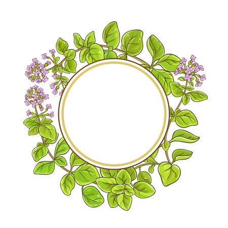 oregano branch vector frame