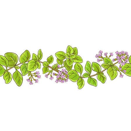 oregano branch vector pattern Ilustração