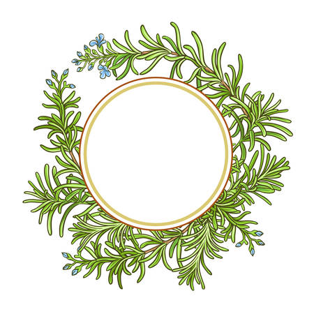 rosemary branch vector pattern Çizim
