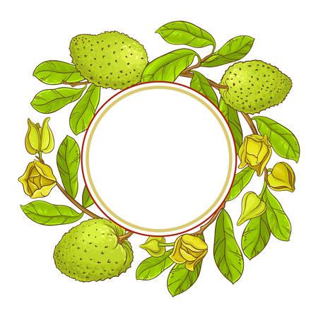 soursop  vector frame Illustration