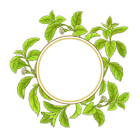 Stevia branch vector frame