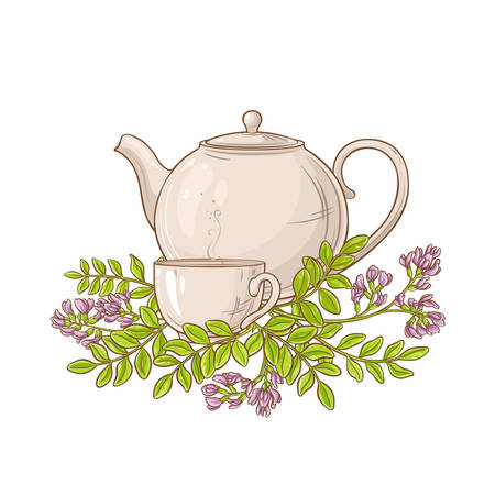 astragalus tea in teapot