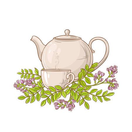 astragalus tea in teapot Illustration