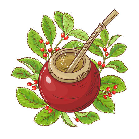 mate tea vector illustration