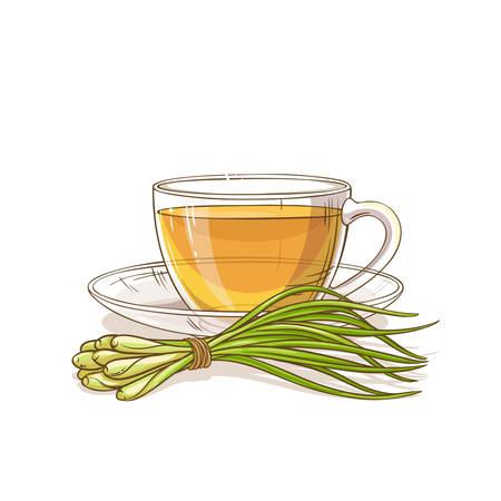 lemongrass tea illustration