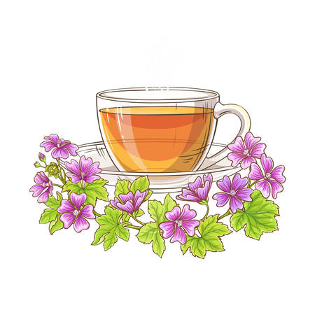 malva tea illustration Illustration