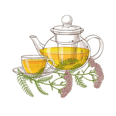 yarrow tea illustration
