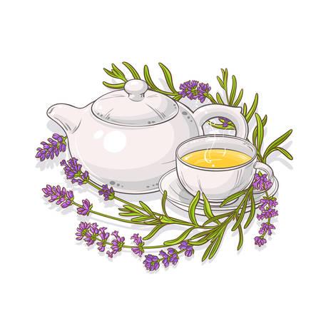 lavender tea illustration  イラスト・ベクター素材