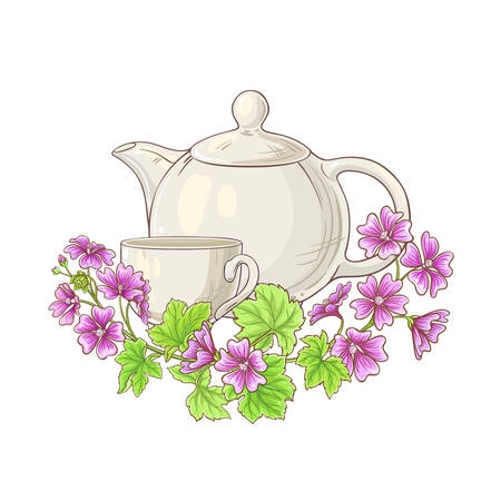 malve tea illustration