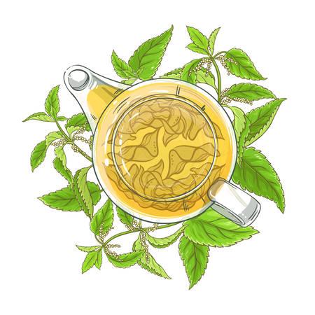 nettle tea illustration