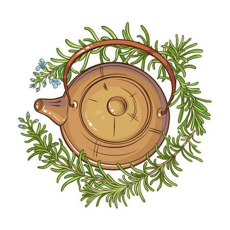 Rosemary tea in teapot illustration on whte background