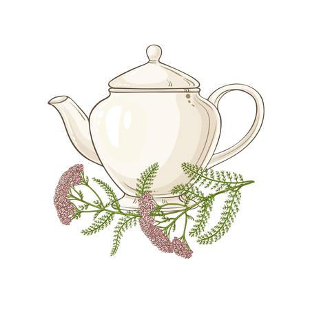 milfoil tea illustration on white background Ilustracja