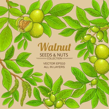 walnut vector frame
