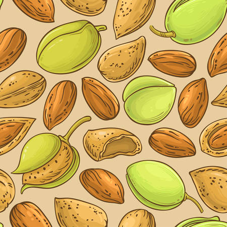almond nuts vector pattern