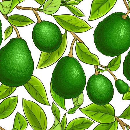 avocado vector pattern on white background Illustration