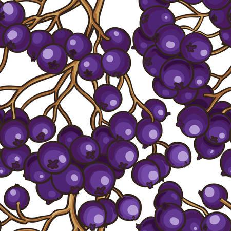 black rowan berries vector pattern on white background Illustration