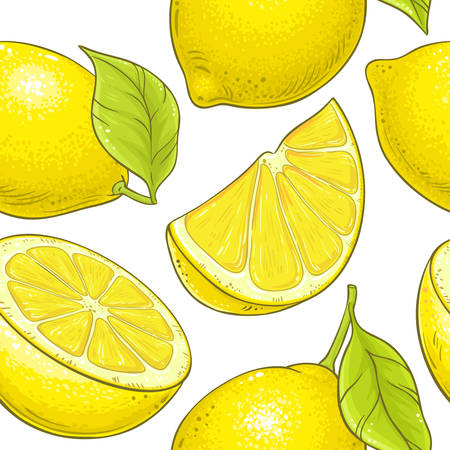 lemon fruit vector pattern on white background Stock Vector - 127621030