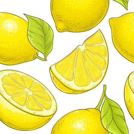 lemon fruit vector pattern on white background