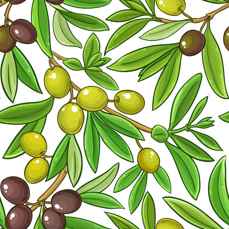 olive vector pattern on white background