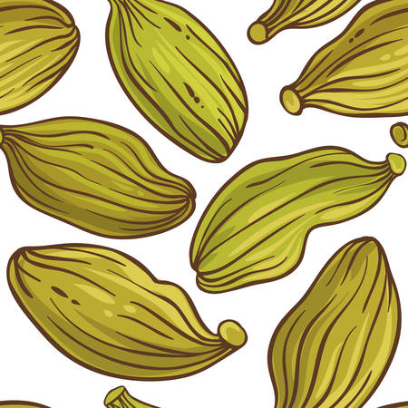 cardamom seeds vector pattern on white background