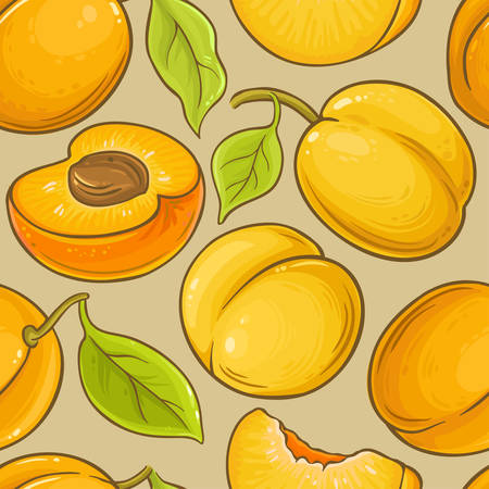 apricot fruit vector pattern on color background Illustration