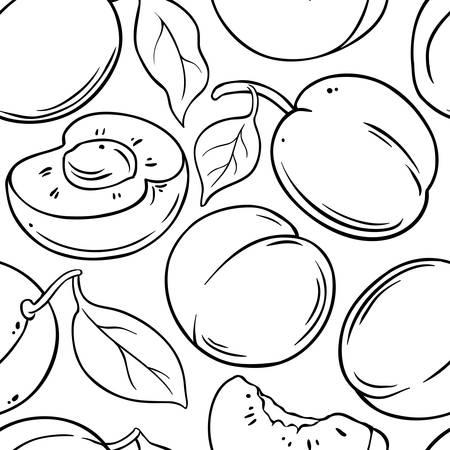 apricot fruit vector pattern on white background Illustration