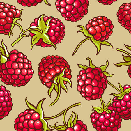 raspberry berries vector pattern on color background