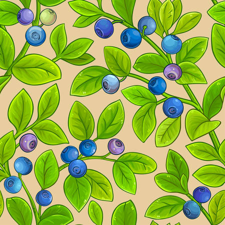 bilberry vector pattern on color background Stock Vector - 126976622