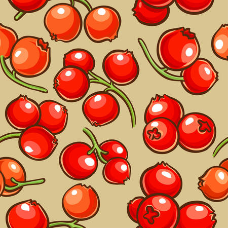 cranberry berries vector pattern on color background