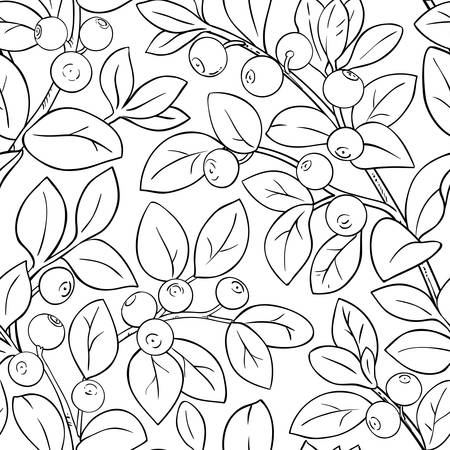 bilberry vector pattern on white background