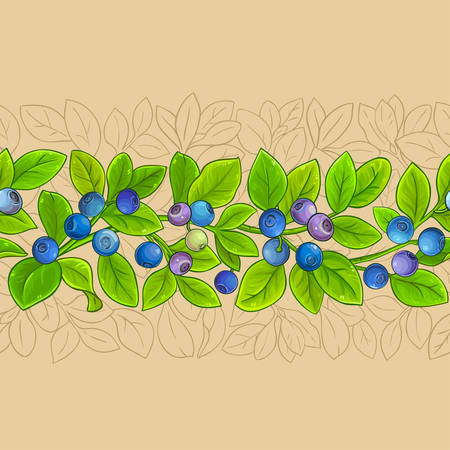 bilberry vector pattern on color background