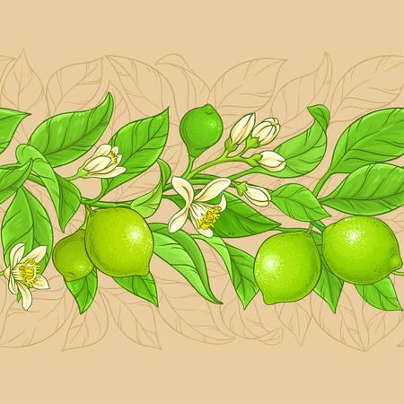 lime vector pattern on color background Illustration