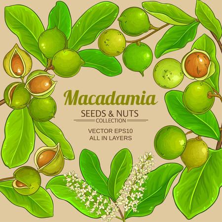 macadamia vector frame Vector Illustration