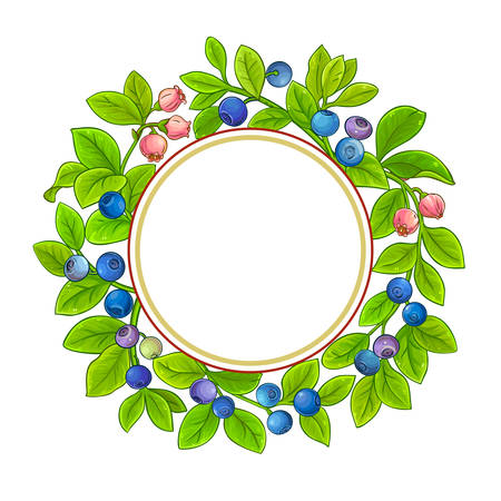 bilberry vector frame on white background Illustration