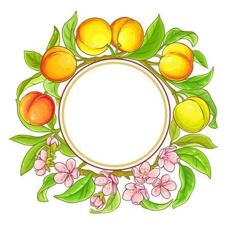 peach vector frame on white background