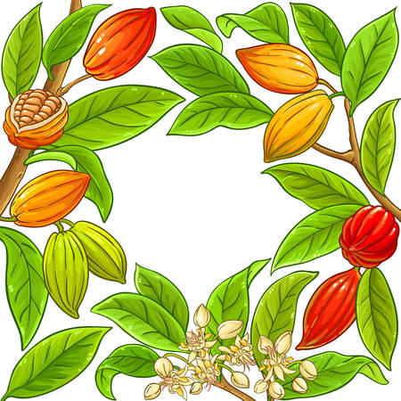 cocoa vector frame on white background