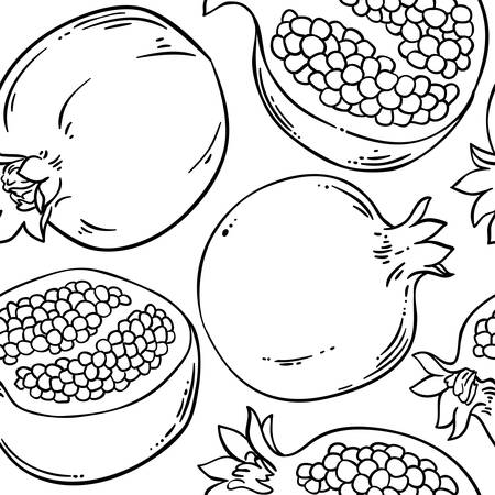 pomegranate vector pattern on white background Illustration