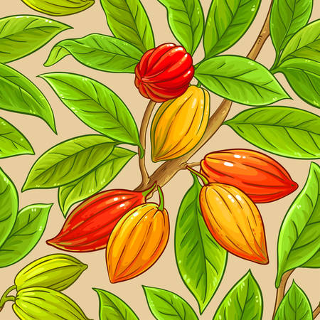 cocoa vector pattern on color background Illustration