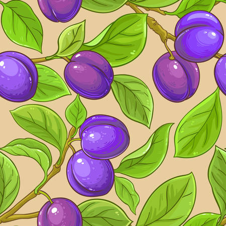 plum vector pattern on color background