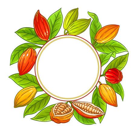 cocoa vector frame on white background Reklamní fotografie - 124880252